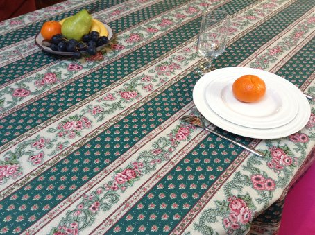 green plastic treated french tablecloth that can be wiped over